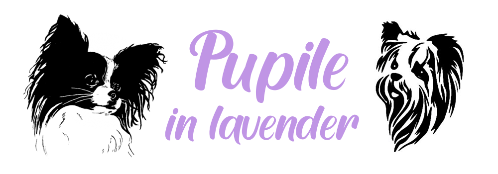 Pupile in Lavender